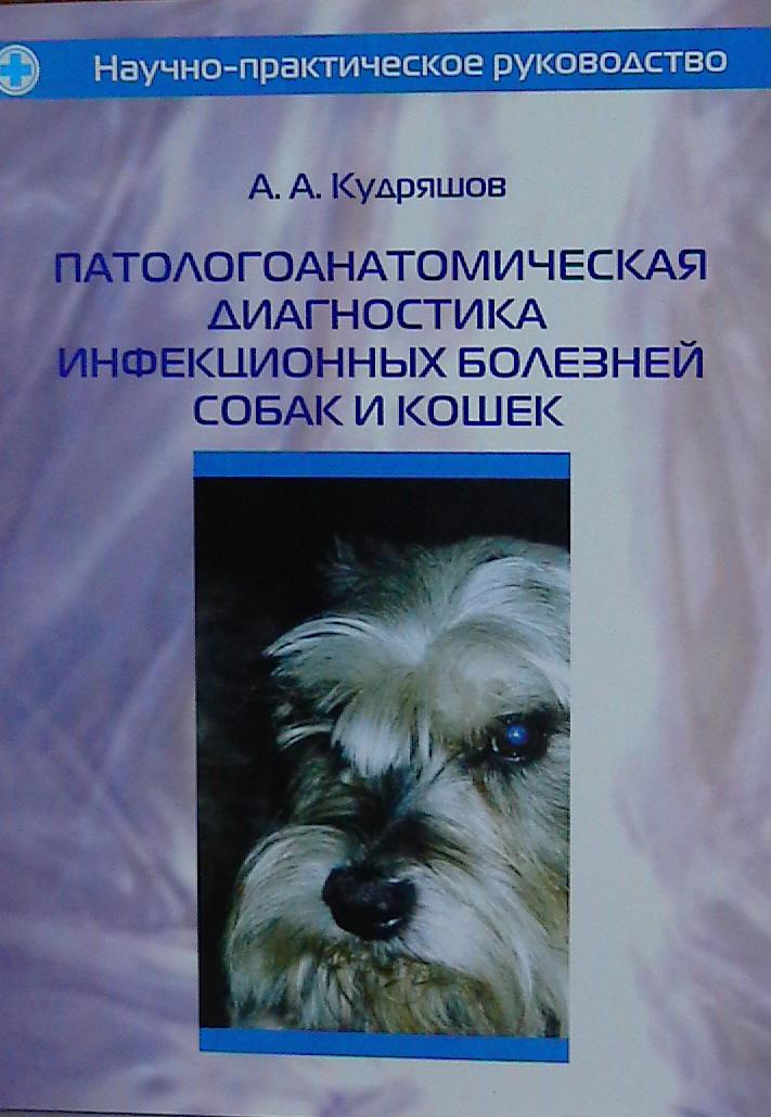 Диагностика заболевания собак